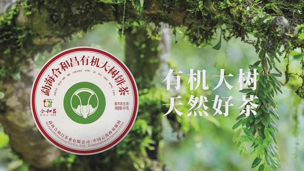 2019年有机大树茶宣传短片