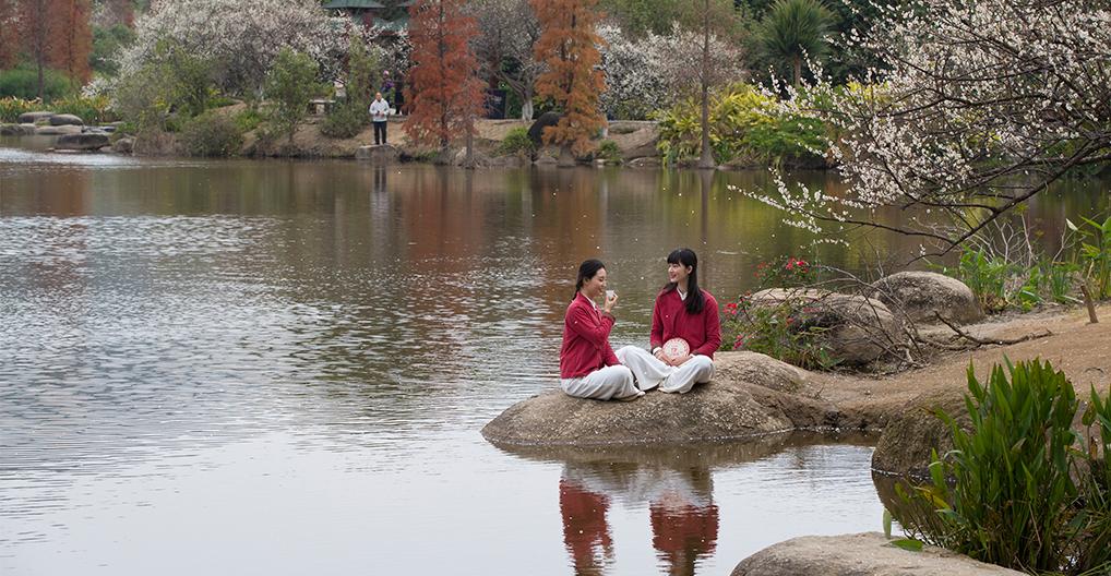 春日女神节, 一杯茶温暖她