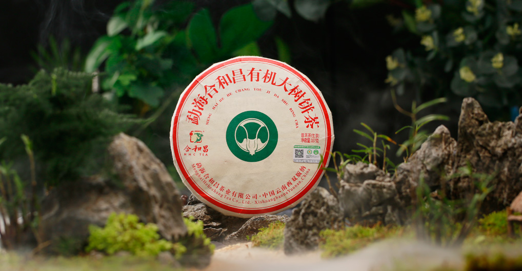 产品上市丨有机大树茶,用标准说话